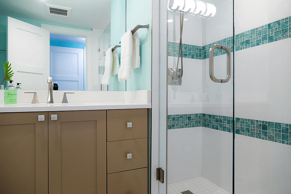Guest shower and Shaker style vanity
